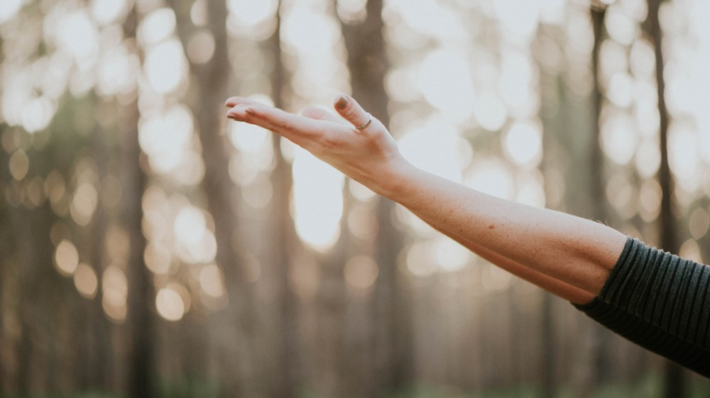 Wellbeing Events Near Me